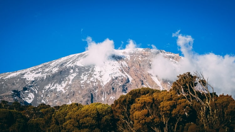 Nyika Discovery - Destinations - Kilimanjaro 2