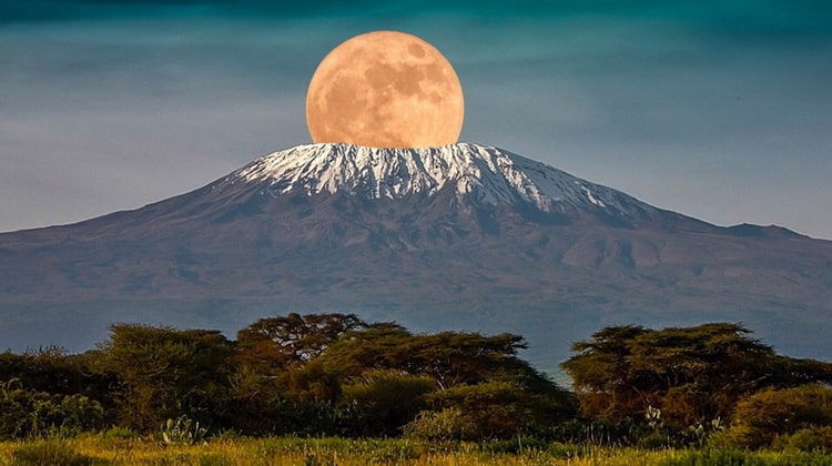 Nyika Discovery - Destinations - Kilimanjaro 4