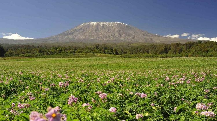 Nyika Discovery - Destinations - Kilimanjaro 8