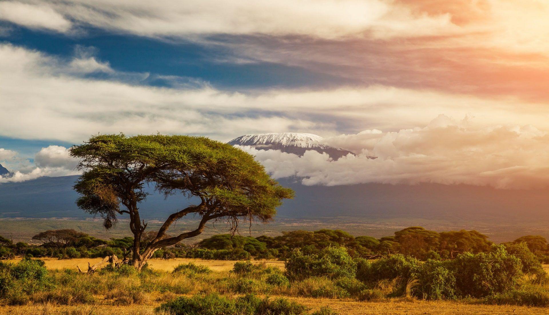Nyika Discovery - Tanzania Treks and tours