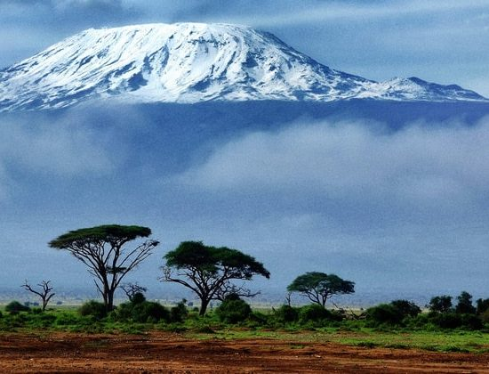 Nyika Discovery - 8 day Mount Kilimanjaro climb via Shira route 03