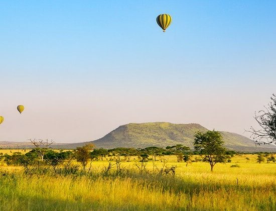 Nyika Discovery - Luxury Safari to Lake Manyara, Ngorongoro and Tarangire - 3 Days 04