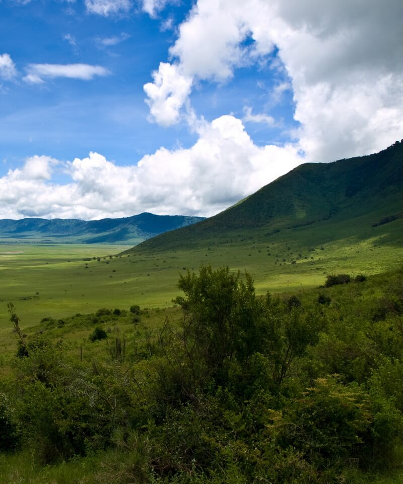Nyika Discovery - Luxury Safari to Lake Manyara, Serengeti, Ngorongoro Crater and Tarangire - 5 Days