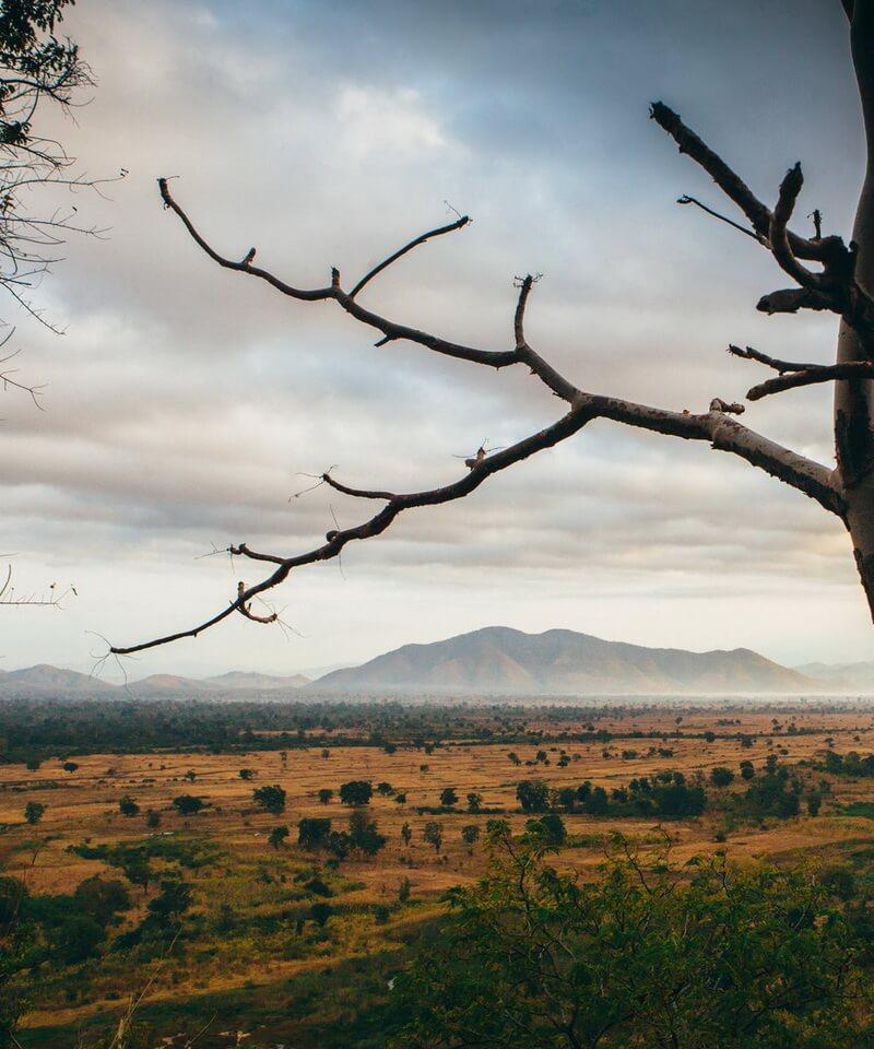 Nyika Discovery - Lake Manyara, Tarangire, Ngorongoro and Serengeti 4 day safari