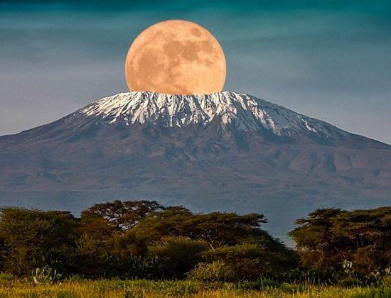 Nyika Discovery - Mount Kilimanjaro Lemosho route 9 days 04