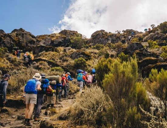 Nyika Discovery - Mount Kilimanjaro Machame route - 7 days 03