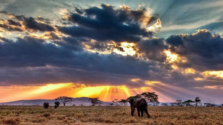Nyika Discovery - Safari Destinations - Sasdani national park 8
