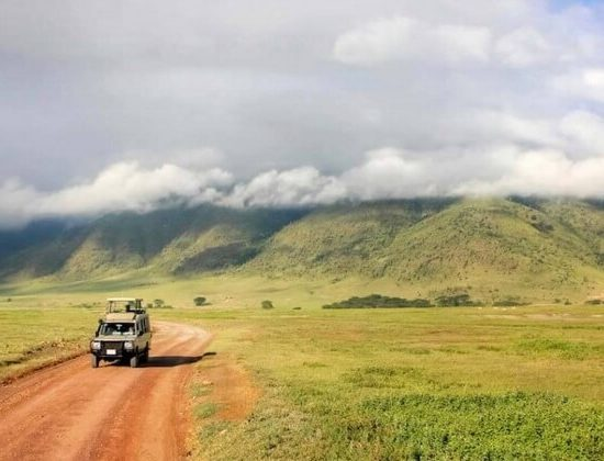 Nyika Discovery - safari to lake Manyara, Serengeti, Ngorongoro crater and Tarangire 5 days mid range 02