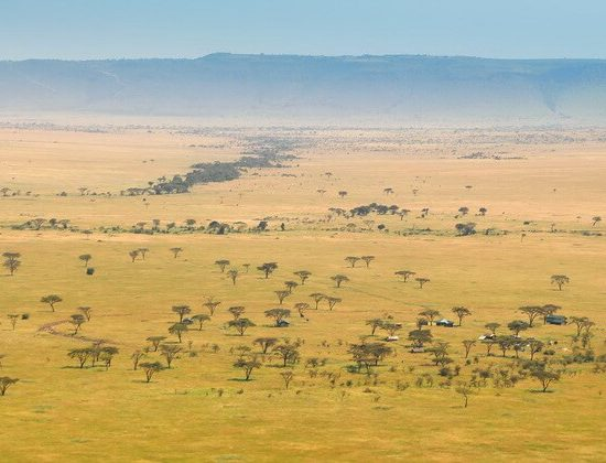 Nyika Discovery - lake Manyara, Serengeti, Ngorongoro crater and Tarangire 6 days mid range safari 02