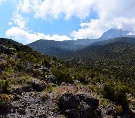 Nyika Discovery - Kilimanjaro Marangu trip
