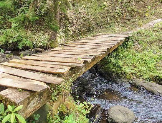 Nyika Discovery - Materuni Waterfalls Tour