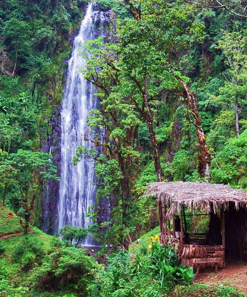 Nyika Discovery - Materuni Waterfalls