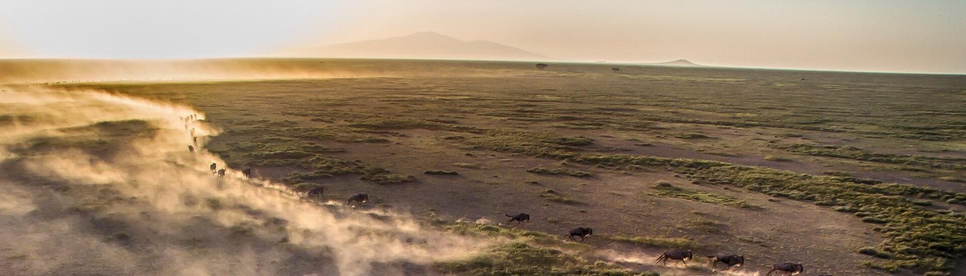 Nyika Discovery, Tanzania - Before you travel
