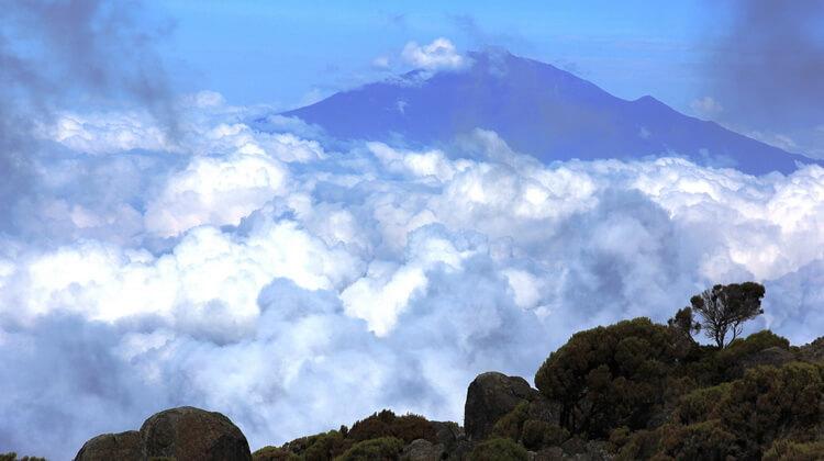 Nyika Discovery, Tanzania - Mt. Meru climbing and treks 06